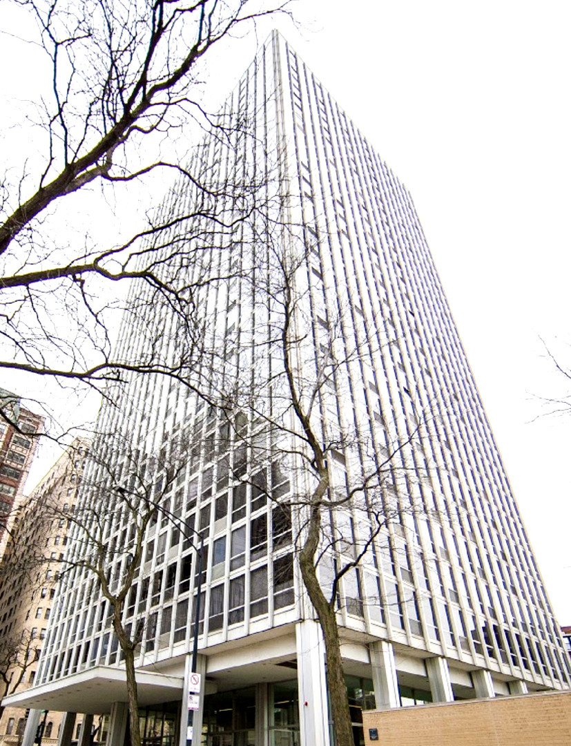 Lincoln Park Homes for Sale -  High Rise,  2400 North Lakeview Avenue