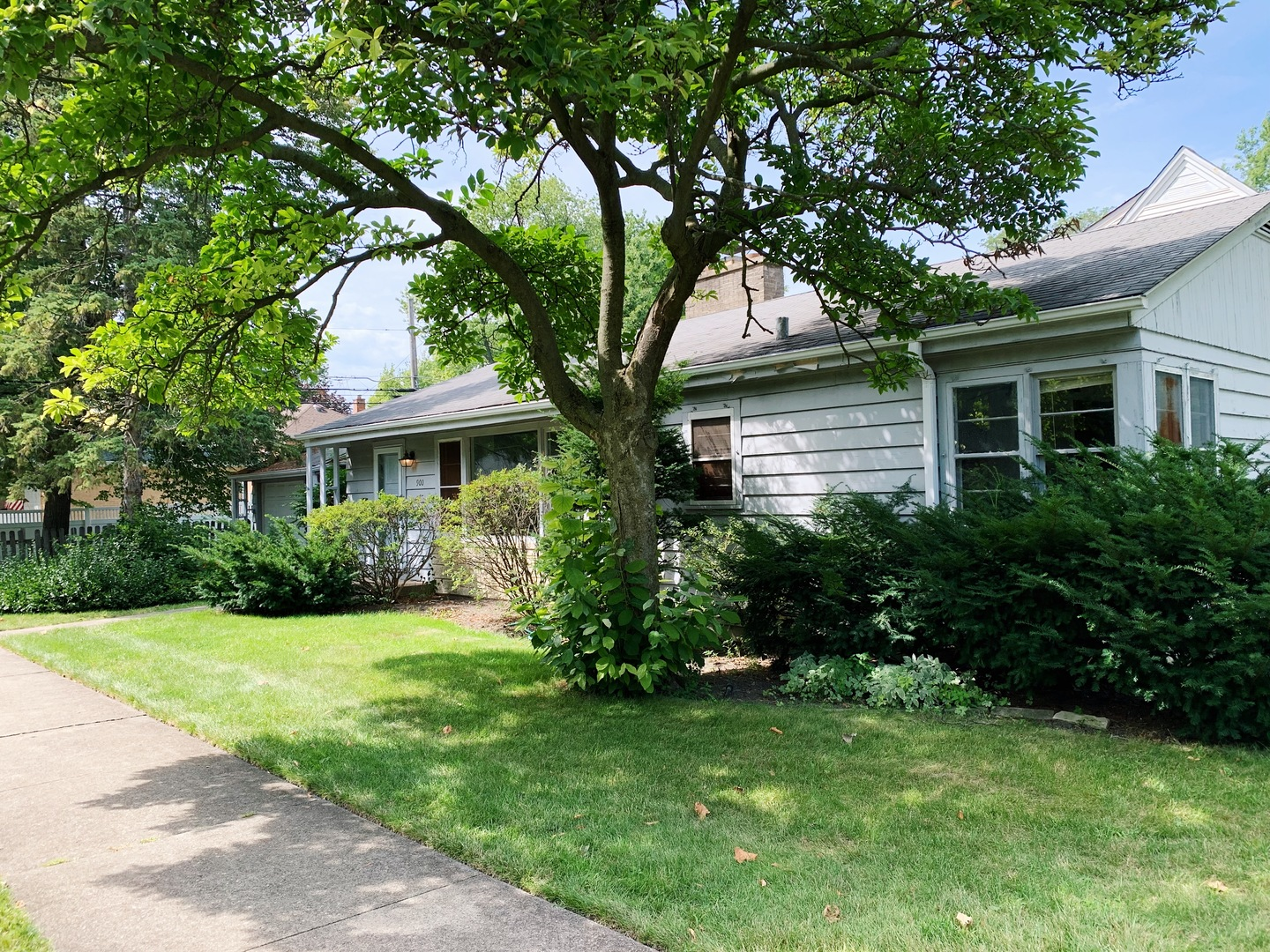 900 Forestview Avenue, Park Ridge in Cook County, IL 60068 Home for Sale