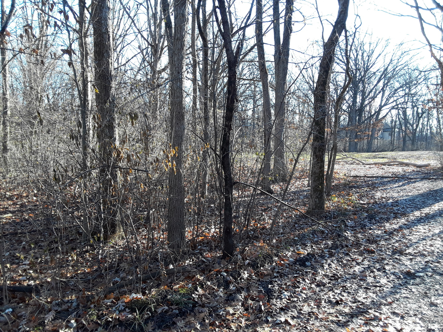 2887 Blackthorn Lot #100 Road, Riverwoods, Illinois