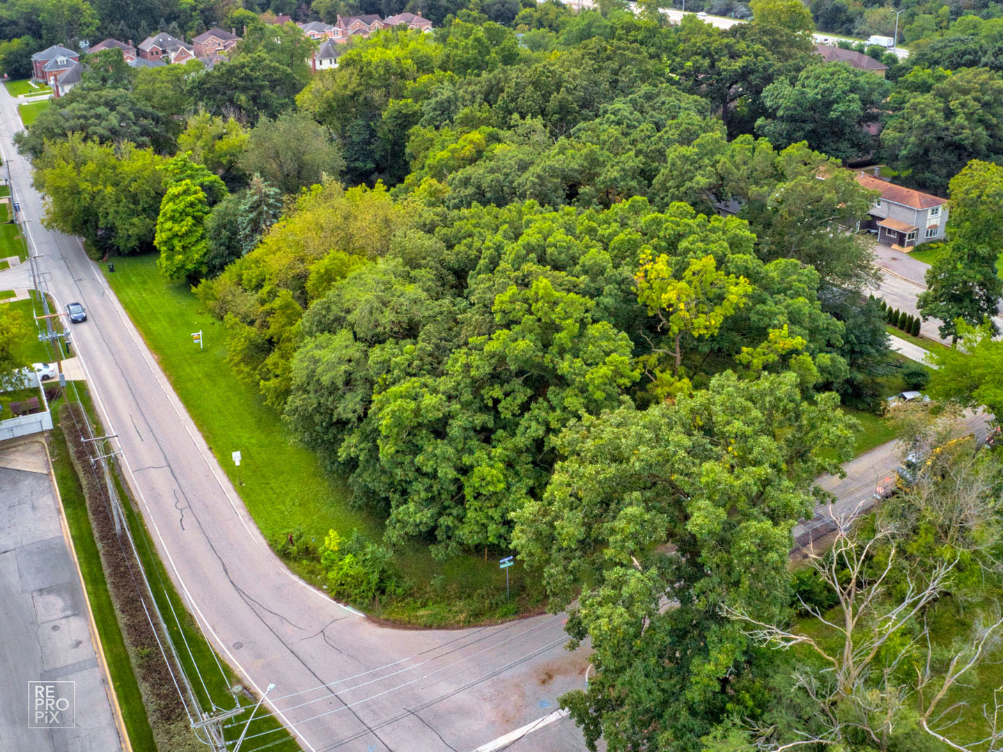 303 Bellaire Avenue, one of homes for sale in Des Plaines