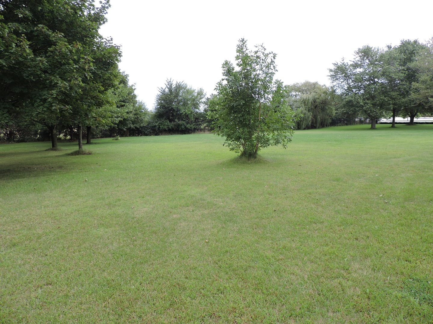 8800 West Lincoln Highway, one of homes for sale in Frankfort