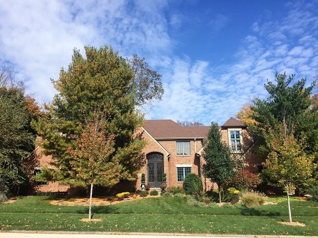 11640 Swinford Lane, Mokena, Illinois