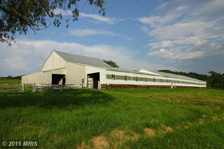 Image of Acreage for Sale near Mount Solon, Virginia, in Augusta county: 8.20 acres