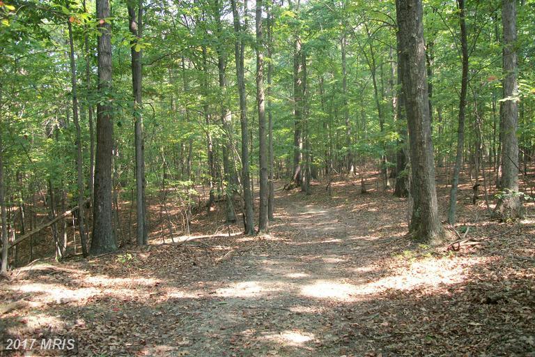 230 acres Oldtown, MD