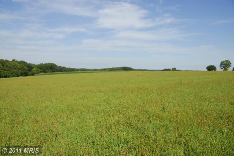 Image of Acreage for Sale near Baldwin, Maryland, in Baltimore county: 3.70 acres