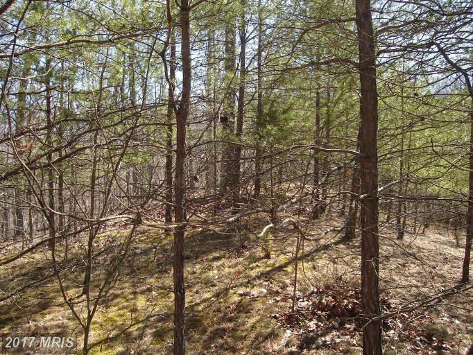 Boy Scout Rd, Hedgesville, WV 25427