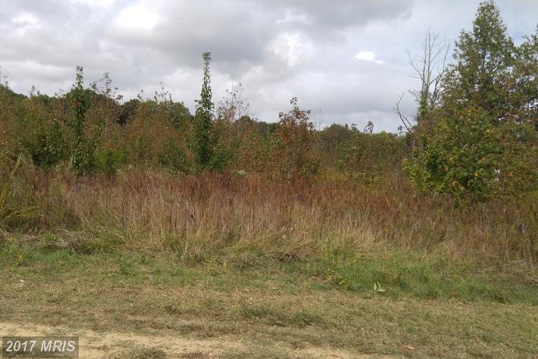Image of Acreage for Sale near Waldorf, Maryland, in Charles county: 17.67 acres