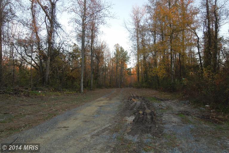 22849 Peaviner Rd, Ridgely, MD 21660