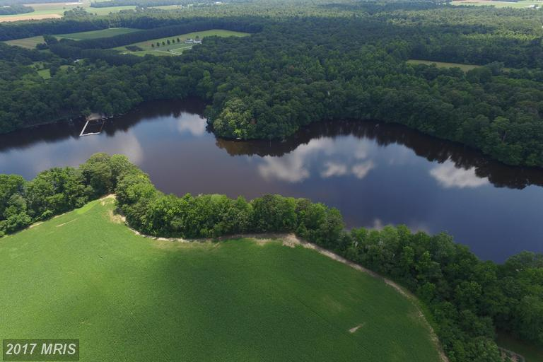 Image of  for Sale near Denton, Maryland, in Caroline County: 80 acres