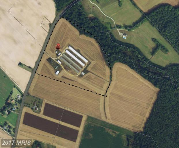 Image of  for Sale near Preston, Maryland, in Caroline County: 38.17 acres