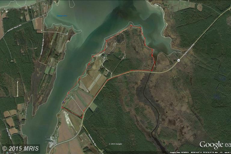 256.97 acres Taylors Island, MD