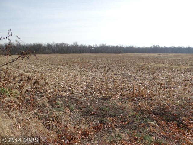 137.49 acres by Mercersburg, Pennsylvania for sale