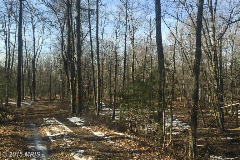 119 acres by Saint Thomas, Pennsylvania for sale