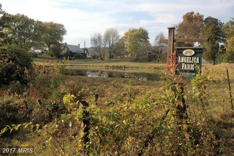 6036 Lawlers Rd, Marshall, VA 20115