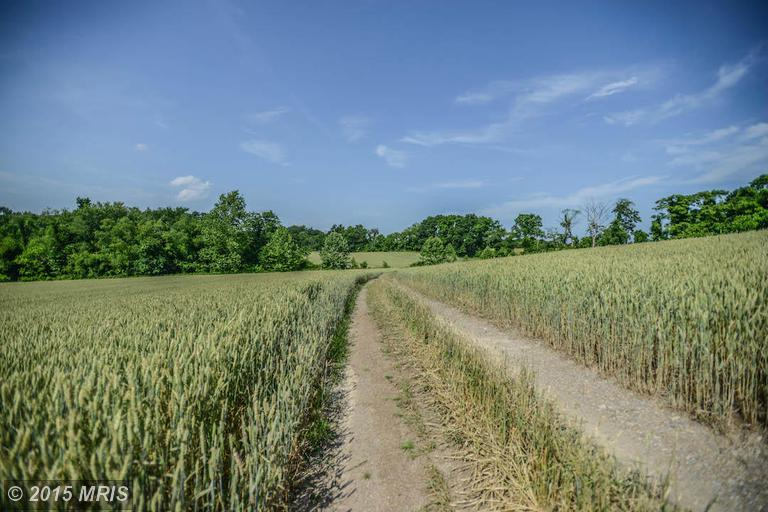 Image of Acreage for Sale near Frederick, Maryland, in Frederick county: 30.91 acres