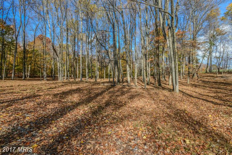 Lot-Land - DICKERSON, MD (photo 4)