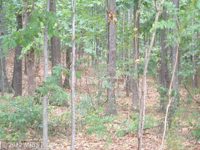 LOT 46 RAINBOW FALLS TRAIL, one of homes for sale in Winchester