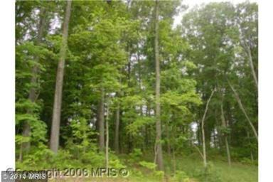 10.04 acres by Gore, Virginia for sale