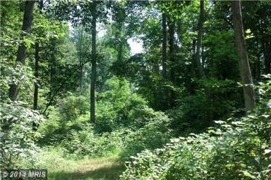 5 acres by Middletown, Virginia for sale