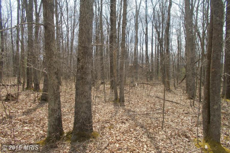 Green Glade Rd, Swanton, MD 21561