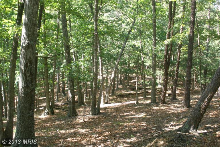 2.25 acres in Wardensville, West Virginia
