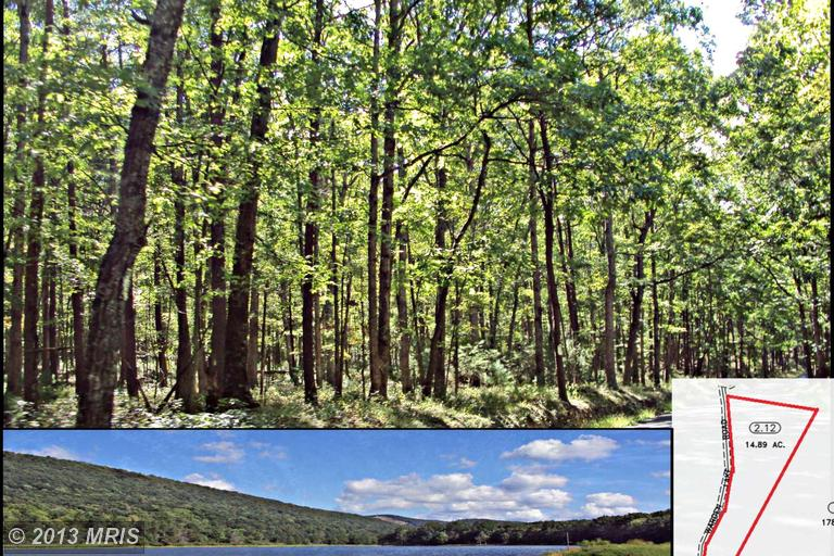 11.62 acres in Wardensville, West Virginia