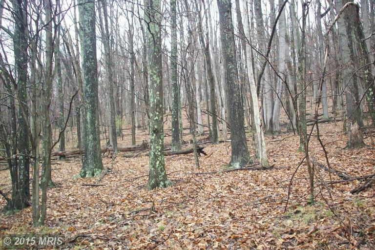 Timberline Dr, Lost City, WV 26810