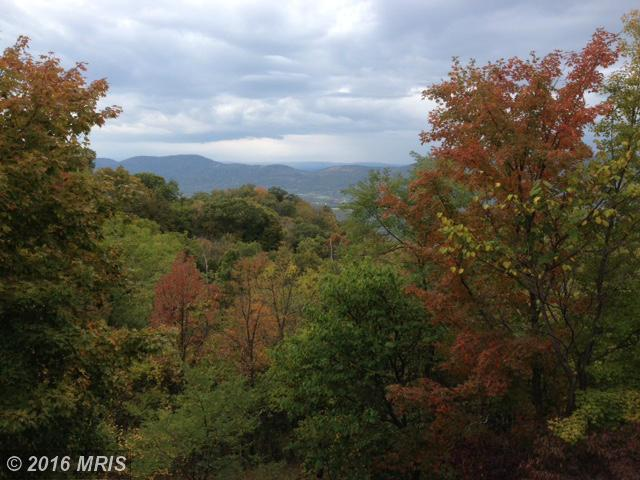 259 Saddle Rd, Old Fields, WV 26845
