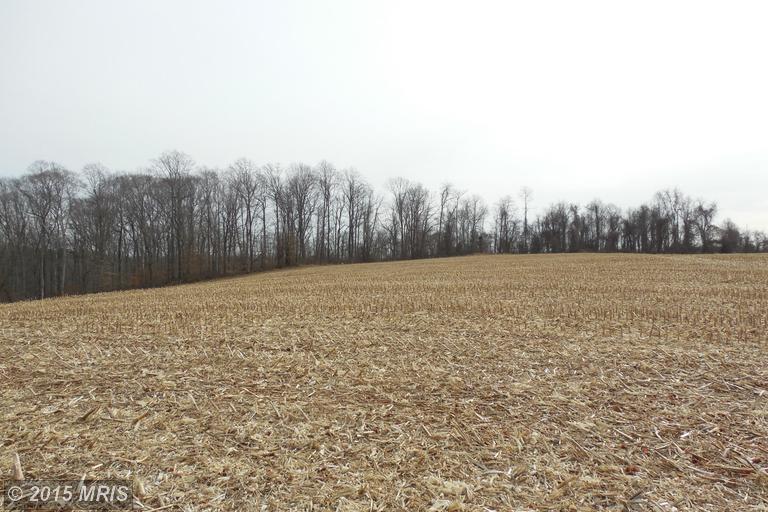 137.41 acres Street, MD