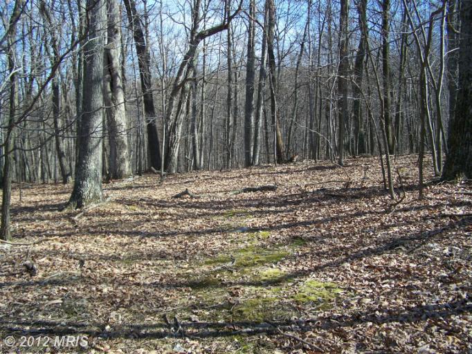 1112 Cardinal View Rd, PAW PAW, WV 25434