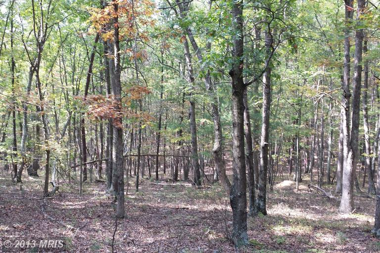 4 acres in Delray, West Virginia