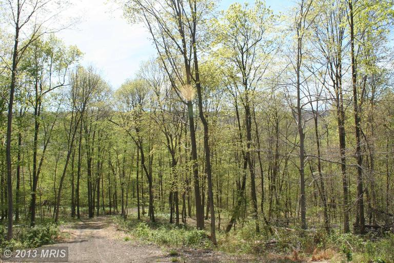 Image of Acreage for Sale near Orbisonia, Pennsylvania, in Huntingdon county: 16.32 acres