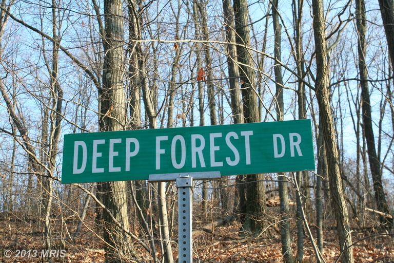 Deep Forest Dr, James Creek, PA 16657