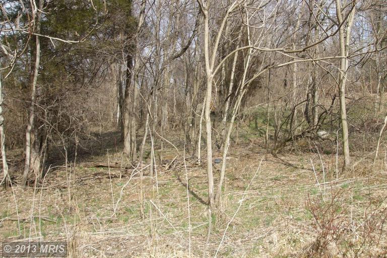 Deep Woods Trl, Shepherdstown, WV 25443