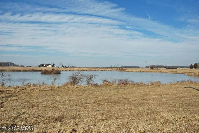 299.96 acres Galena, MD