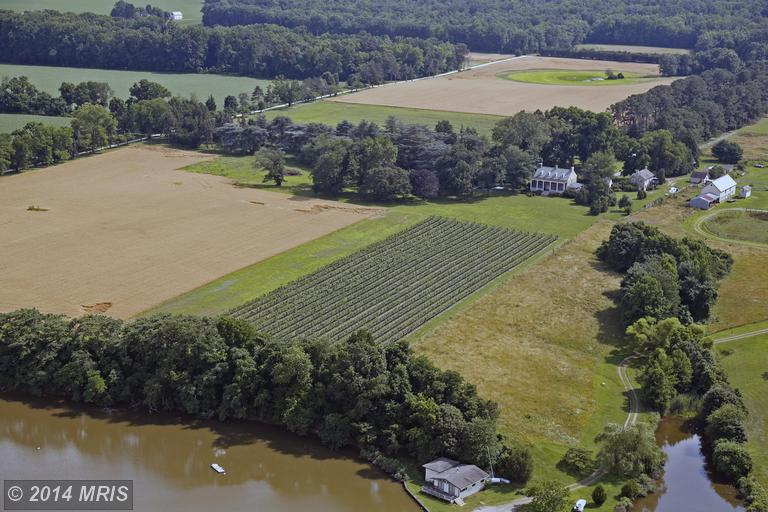 61.55 acres Chestertown, MD