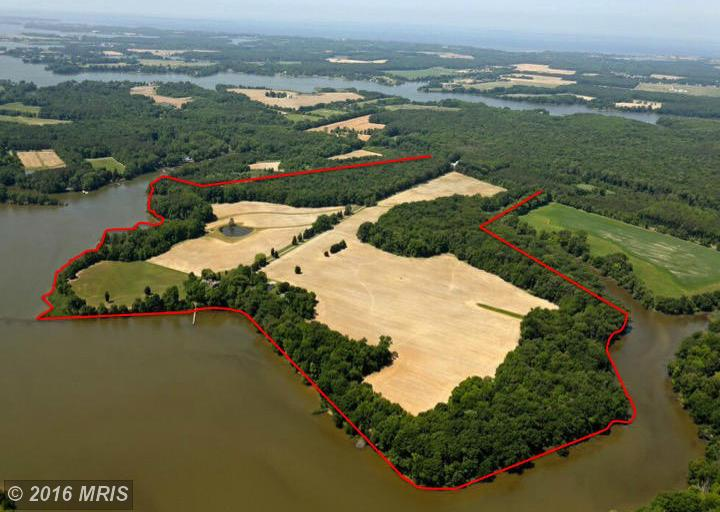 143.4 acres Chestertown, MD