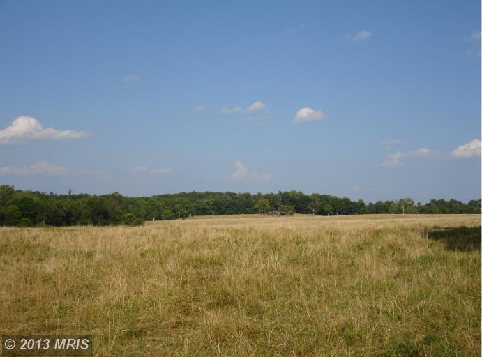Image of Acreage for Sale near Bluemont, Virginia, in Loudoun county: 164.00 acres