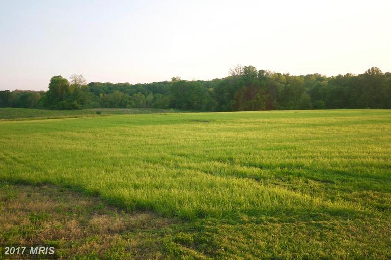 Image of Acreage for Sale near Purcellville, Virginia, in Loudoun County: 65.03 acres