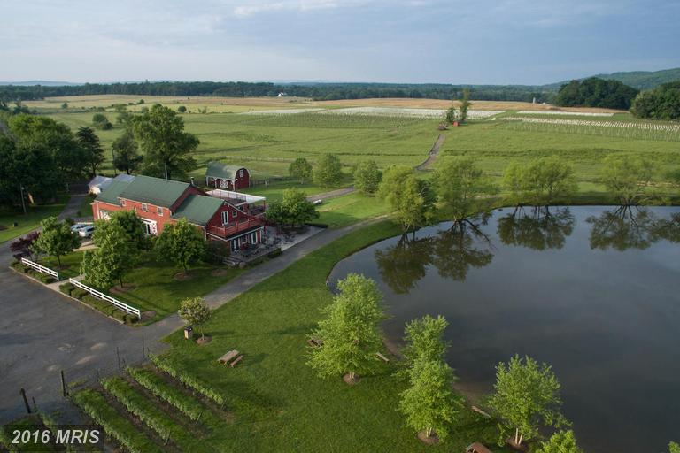Image of  for Sale near Purcellville, Virginia, in Loudoun County: 413 acres