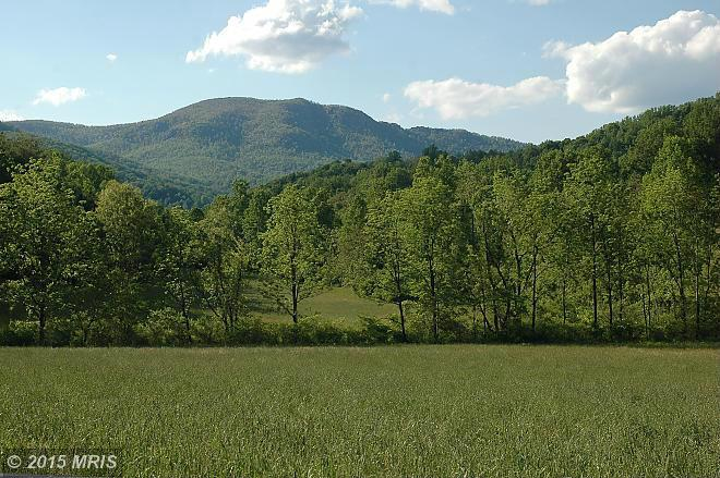 176 acres by Madison, Virginia for sale