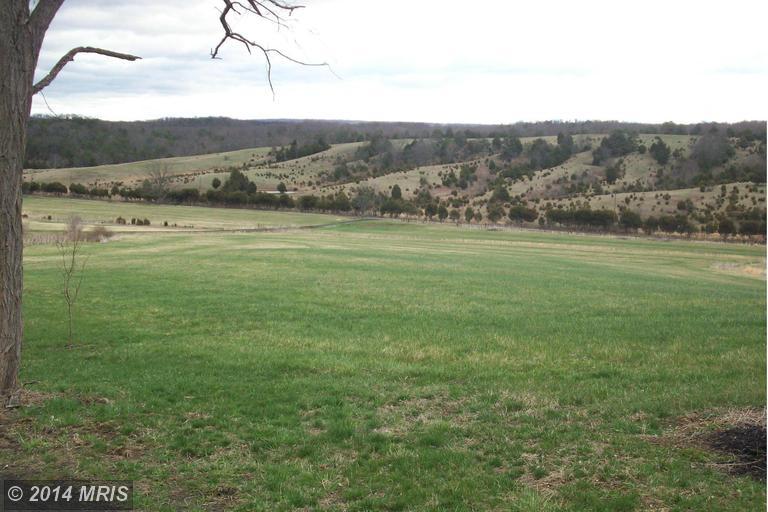 19.42 acres by Burlington, West Virginia for sale
