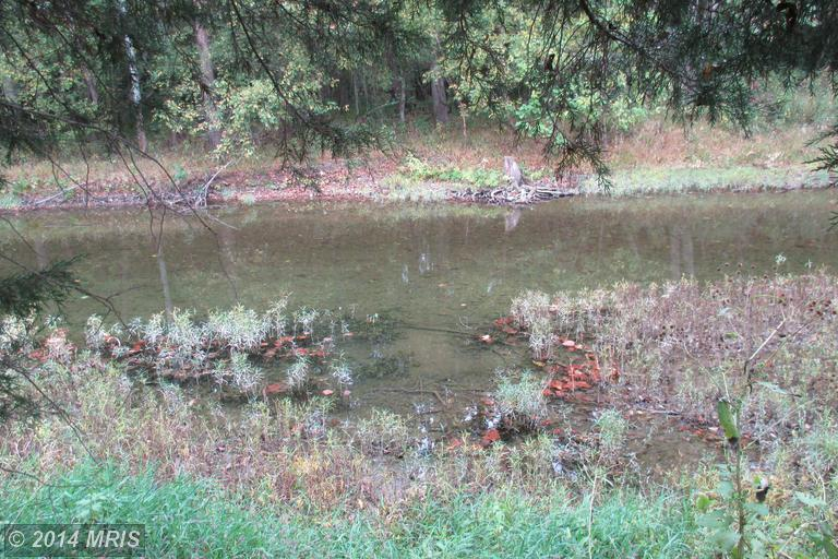 30.39 acres by Keyser, West Virginia for sale