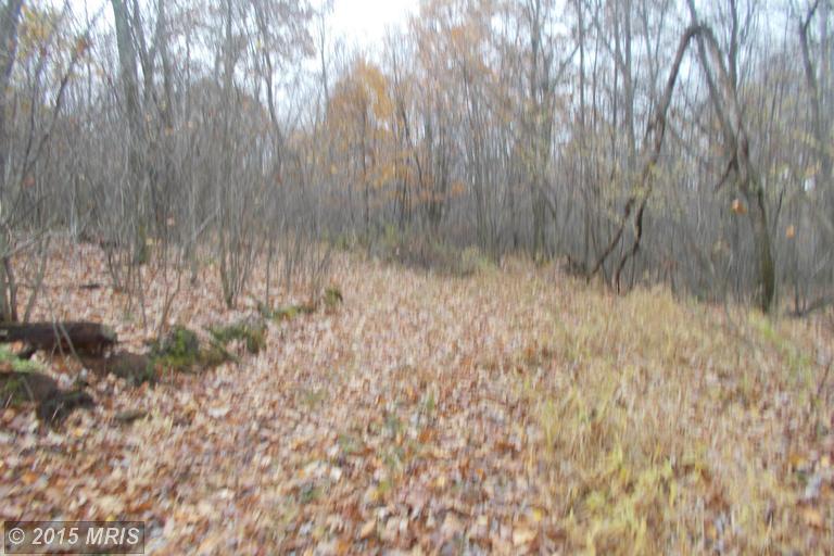 68.48 acres by Elk Garden, West Virginia for sale