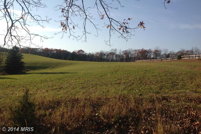100 acres Burlington, WV
