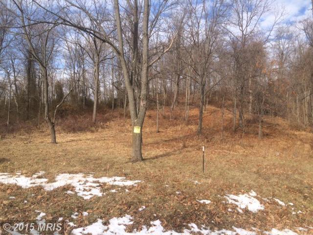 14.71 acres by New Creek, West Virginia for sale