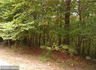 James Folly Rd, Great Cacapon, WV 25422