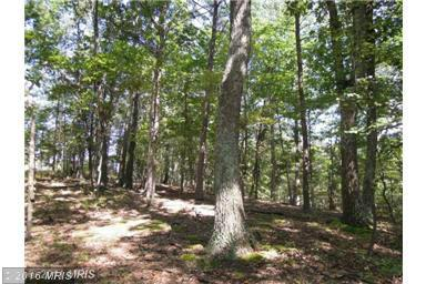 Spring Hollow Ln, Great Cacapon, WV 25422