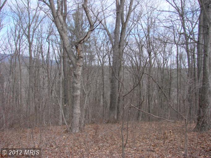 Image of Acreage for Sale near Rileyville, Virginia, in Page county: 3.00 acres