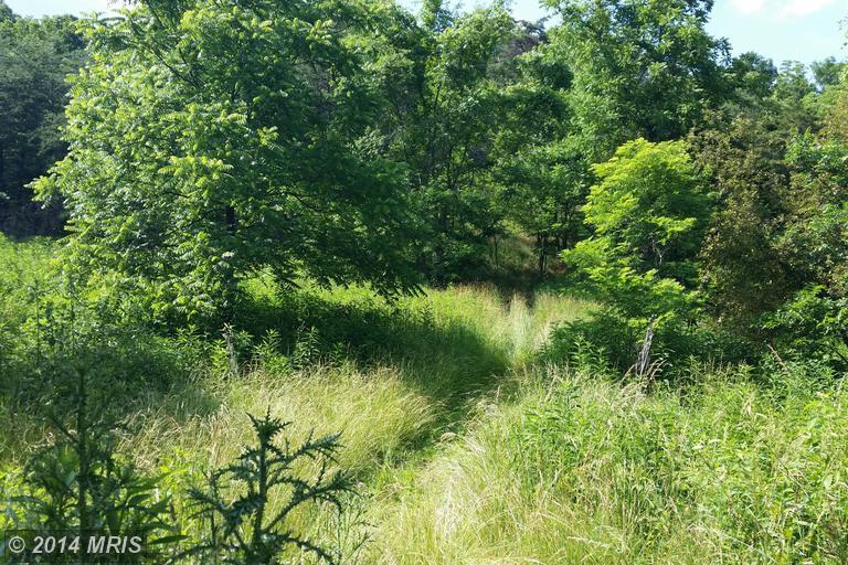 Ridge Rd, Upper Tract, WV 26866